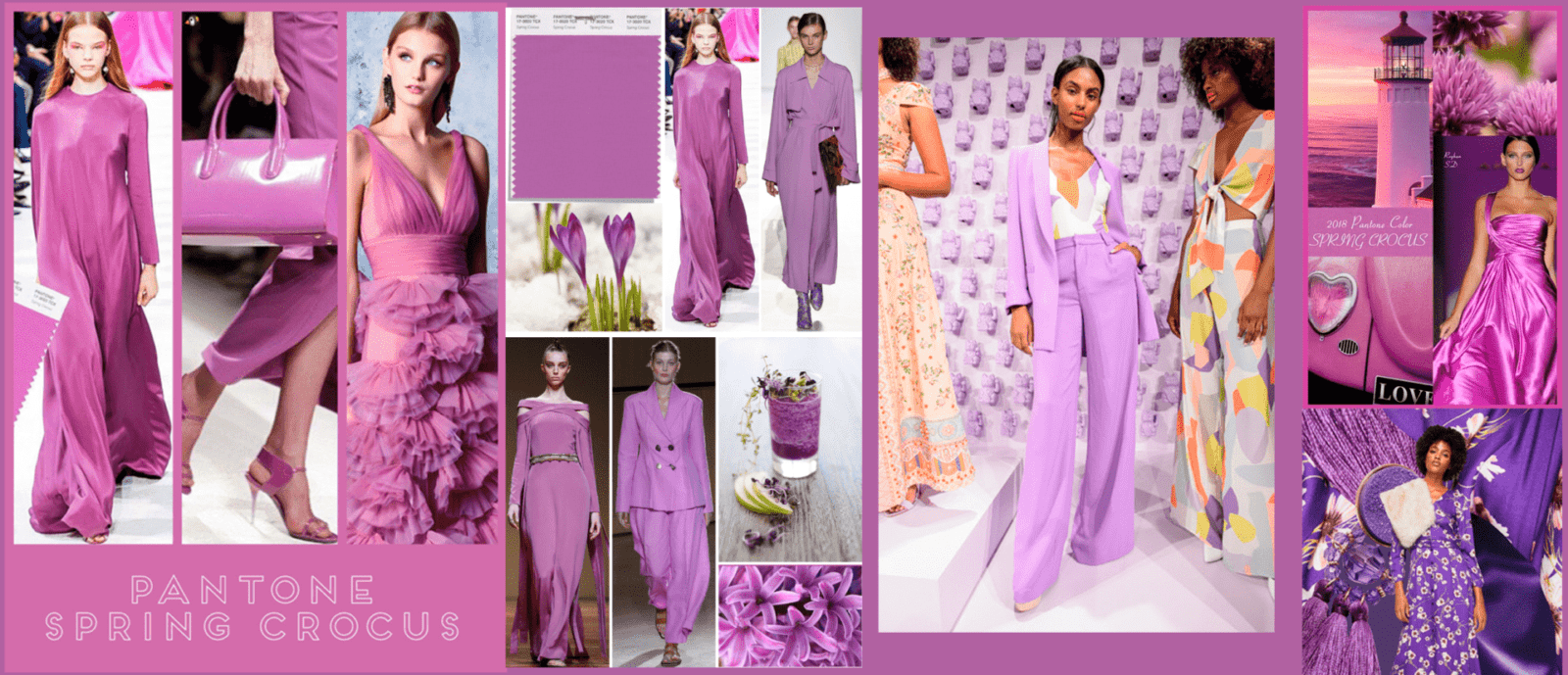 2019-Color-of-the-Year-spring crocus-lilac-purple-lavender--axelles-eng